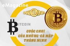 """Bitcoin: Cuộc chơi của những """"cá mập"""" thông minh"""