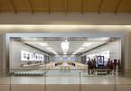 11 Apple Store tại Mỹ đóng cửa do số ca Covid-19 tại Mỹ tăng trở lại