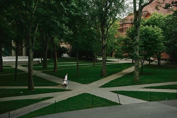 Mỹ: Nhiều trường phản đối việc du học sinh sẽ bị tước bằng visa nếu chỉ học online