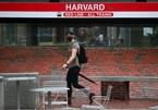 Facebook, Google, Microsoft ủng hộ cuộc đấu tranh cho du học sinh tại Mỹ