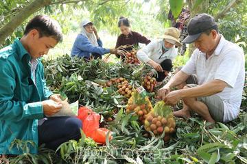 Hưng Yên muốn Bộ TT&TT hỗ trợ trở thành địa phương chuyển đổi số kiểu mẫu