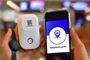Singapore bắt buộc người nhập cảnh đeo thiết bị theo dõi cách ly