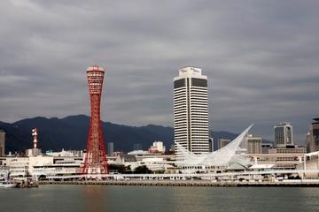 Thành phố Kobe, Nhật Bản vô hiệu hóa tài khoản TikTok vì lo ngại bảo mật