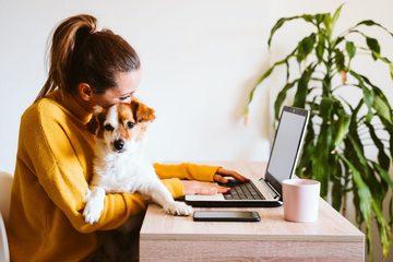 7 tiện ích Chrome hữu ích khi làm việc ở nhà