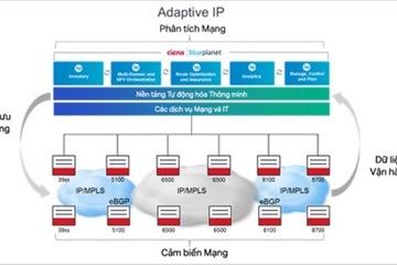 IP Thích ứng sẽ thay đổi mạng IP ra sao?