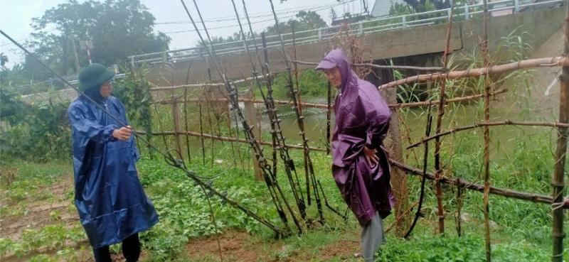 MobiFone ứng phó cơn bão số 5 tại Trung Bộ