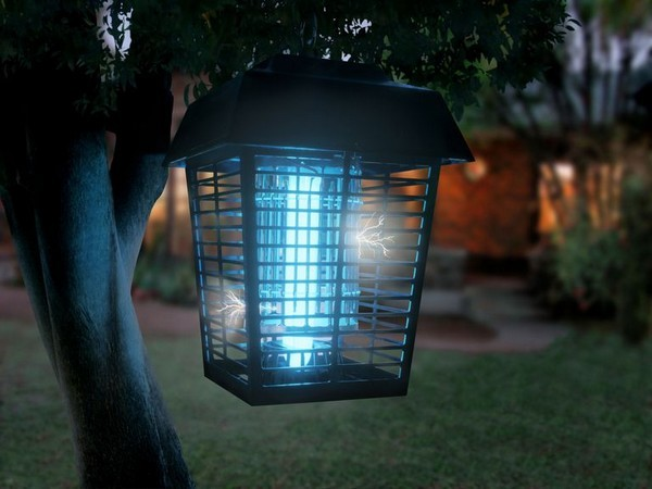 Đèn bắt muỗi có thực sự hiệu quả như quảng cáo?