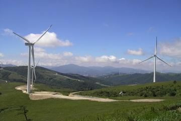 Gia Lai khởi công thêm 2 nhà máy điện gió tổng công suất 319,5 triệu kW/năm