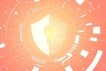 Đà Nẵng hợp tác với Nhật Bản trong mảng an toàn thông tin