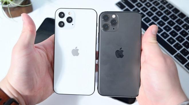 Nên chọn mua mẫu iPhone 12 nào?