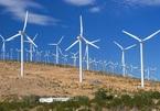 Ninh Thuận: 3 dự án điện mặt trời, 14 dự án điện gió đang triển khai