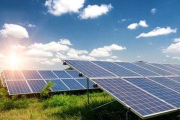 Phát triển nông nghiệp dưới hệ thống pin mặt trời