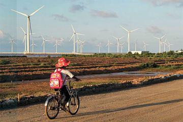Giải bài toán thiếu hụt điện năng từ cơ chế mở cho năng lượng tái tạo