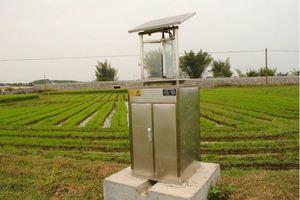 Dùng đèn bắt côn trùng năng lượng mặt trời để tiết kiệm điện