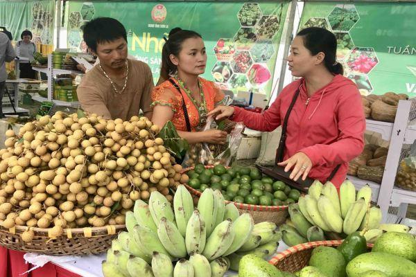 Sơn La thúc đẩy thị trường TMĐT thanh toán không tiền mặt giai đoạn 2021-2025