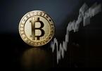 Tăng hơn 800%, Bitcoin đầy hiểm nguy với nhà đầu tư lướt sóng