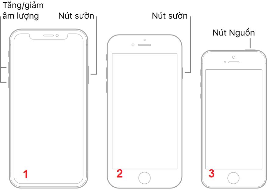 Cách tắt nguồn iPhone khi 'bị đơ'