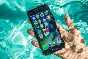 Apple phóng đại khả năng chống nước của iPhone?