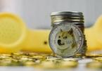 Dogecoin chuẩn bị lên sàn tiền ảo của Mỹ