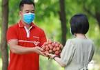 Nhiều nền tảng thương mại điện tử tham gia tiêu thụ vải thiều Bắc Giang, Hải Dương