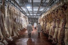 Mã độc tấn công vào công ty chế biến thịt lớn nhất thế giới