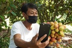 Vải Bắc Giang vào vụ, các sàn thương mại điện tử đồng loạt mở bán