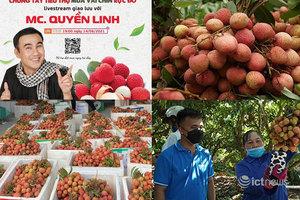 MC Quyền Linh livestream hỗ trợ tiêu thụ vải Bắc Giang qua sàn Vỏ Sò