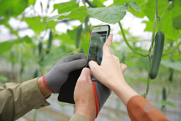 Giúp nông dân chuyển đổi số