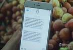 Nhà mạng tiếp tục nhắn tin kêu gọi người dân cả nước mua trực tuyến vải Bắc Giang