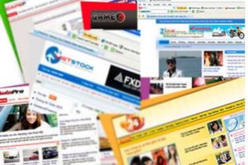 Trang thông tin điện tử tổng hợp chỉ được lấy lại bài từ các báo sau 30 phút xuất bản