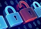 Cảnh báo 5 lỗ hổng bảo mật mức cao và nghiêm trọng trong các sản phẩm Microsoft