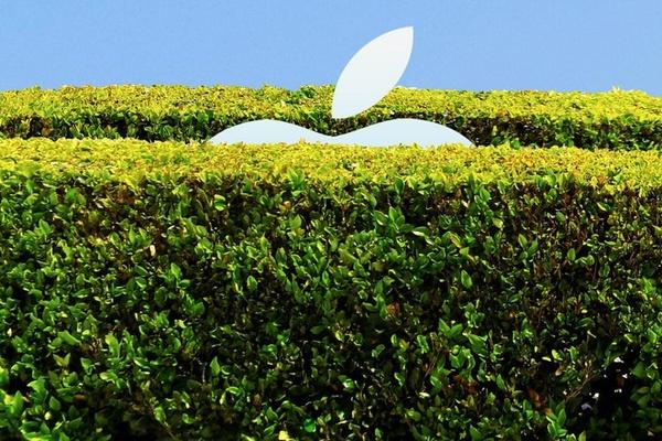 Elon Musk mỉa mai Apple