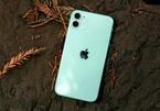 Những mẫu iPhone qua sử dụng giá dưới 12 triệu đồng