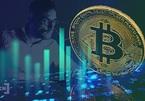 Bitcoin vọt lên 43.000 USD, sẽ thiết lập vùng kháng cự mới?