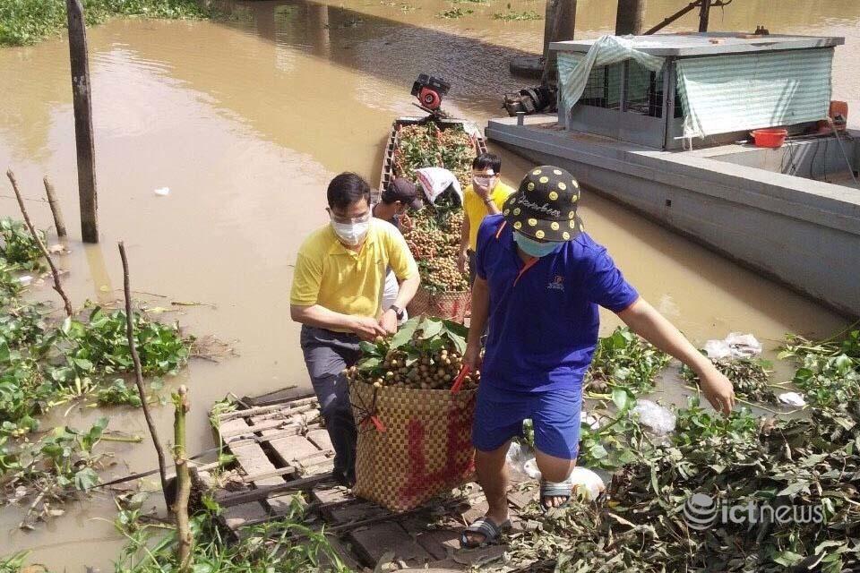 Vỏ Sò, Postmart đã hỗ trợ tiêu thụ gần 1.200 tấn nông sản cho các tỉnh phía Nam