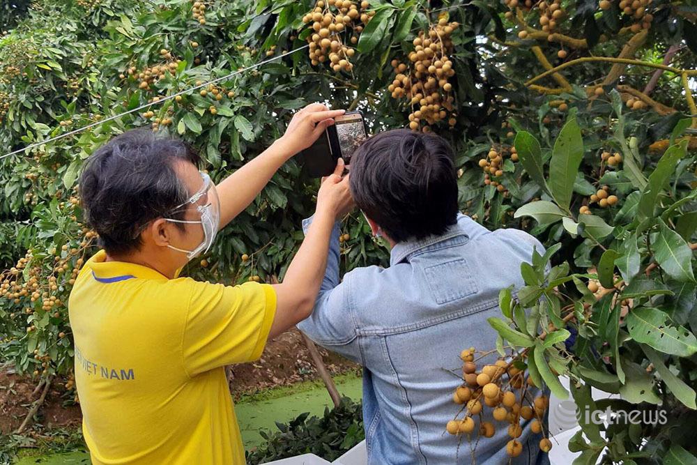 Địa phương xây dựng kế hoạch đưa hộ sản xuất nông nghiệp lên sàn điện tử