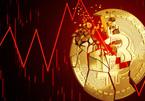 Bitcoin cắm đầu giảm sâu khi Trung Quốc tuyên bố tiền ảo là bất hợp pháp