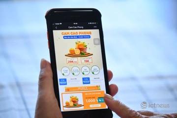 Nâng cao giá trị cho cam Cao Phong qua kênh tiêu thụ trực tuyến Postmart, Vỏ Sò